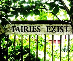 Les contes de fées existent