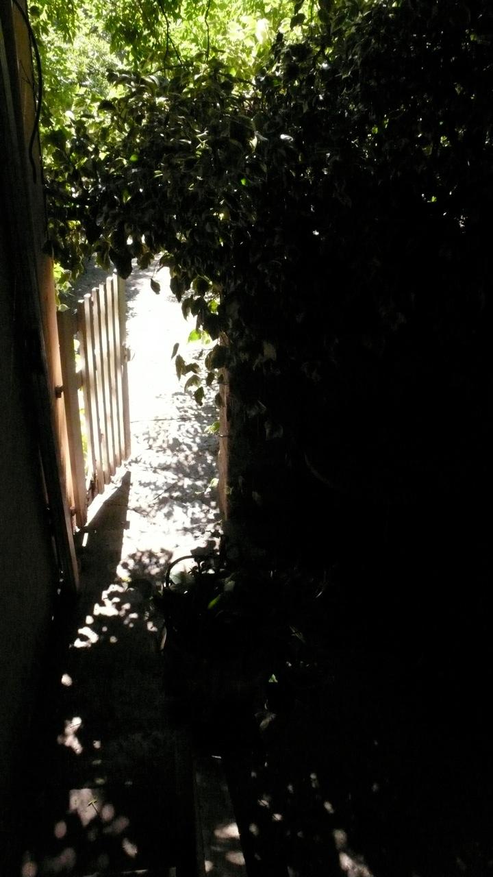 Portillon du patio